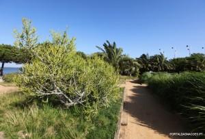 Jardins Garcia d'Orta